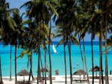 Diamonds Dream of Zanzibar*****
